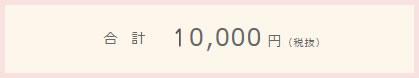 合計10,000円(税抜)